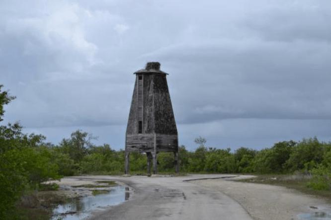 Bad Tower