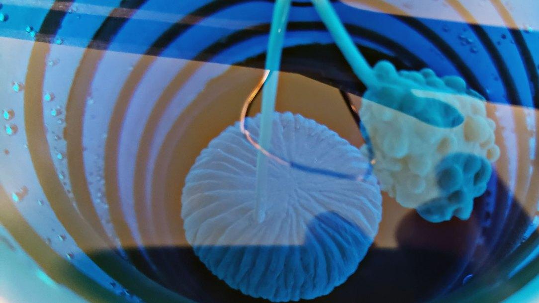 electroforming wax