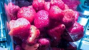 fruitsicles-strawberries