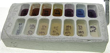 moldboxfused