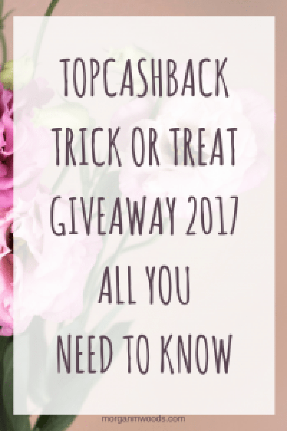 Topcashback Trick or Treat Giveaway 2017 all you need to know