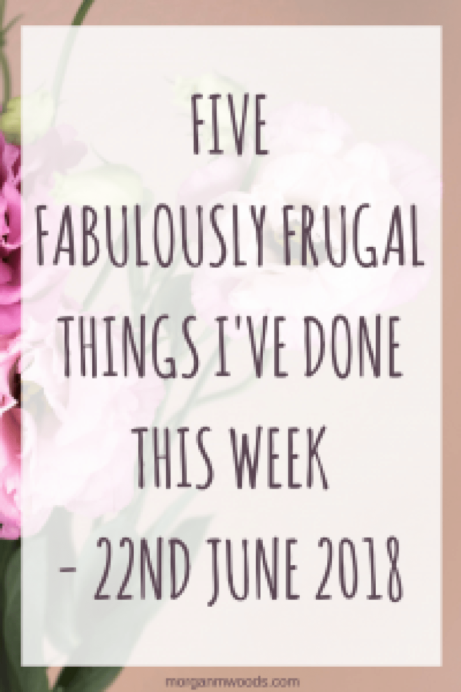 Five fabulously frugal things I've done this week - 22nd June 2018