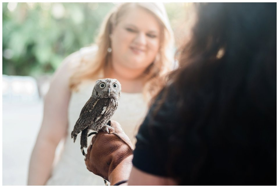 bride and groom animal encounter at palm beach zoo wedding