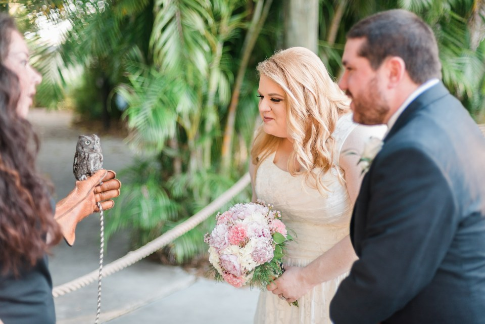A bride and groom have an animal encounter with an owl at their Palm Beach zoo wedding