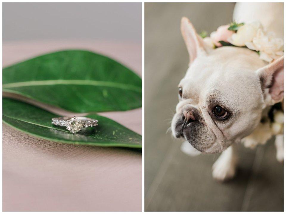 dog in flower collar at wedding