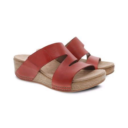 lacee coral burnished 2