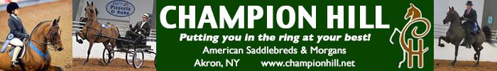 Champion Hill American Saddlebreds & Morgans