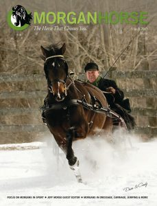 The Morgan Horse, March 2013 Cover