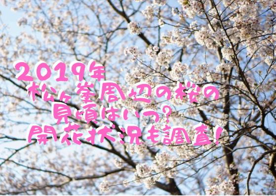 松ヶ峯周辺の桜title