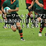 ラグビーワールドカップ2019出場各国の注目の選手と試合カードまとめ!