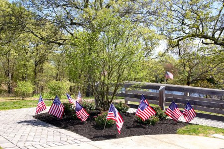 Major Andy O'Keeffe tree memorial - 3
