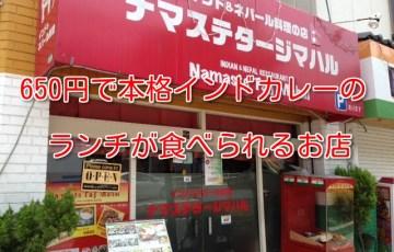 650円で本格インドカレー