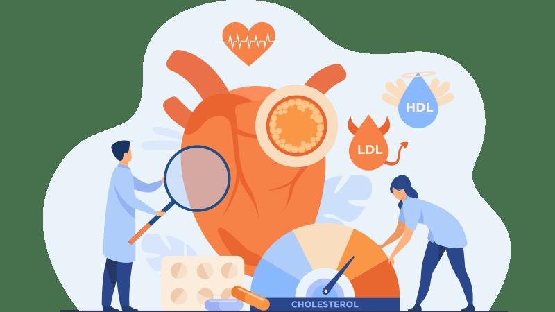心血管疾病風險因子-膽固醇