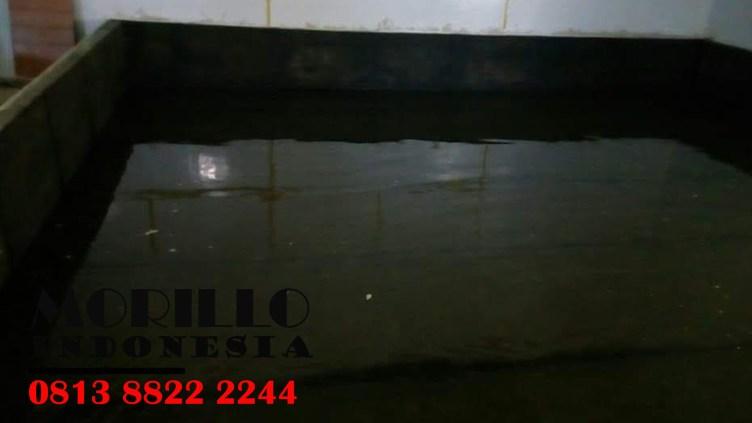Wa Kami - 081 388 222 244 :  APLIKATOR DAMDEX di Wilayah CIGANJUR