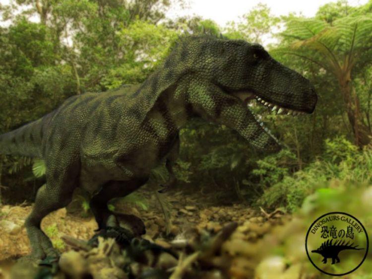 中山雅秀/恐竜の島