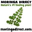 Moringa Direct logo