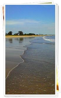 干潮時の三重大学東海岸の様子~潮の香りと波砂の感触を楽しむ~