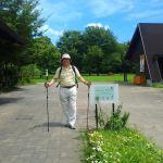 シギ・チドリが立寄る東京港野鳥公園