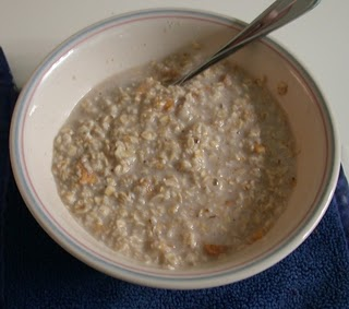 Food storage mormon life hacker homemade instant oatmeal forumfinder Images