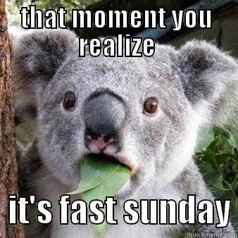 Fast Sunday: a collection of favorite memes