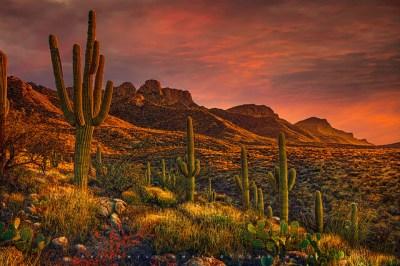 Colorful clouds gather at sunset at the pusch ridge mountain range, santa catalina mountains, arizona
