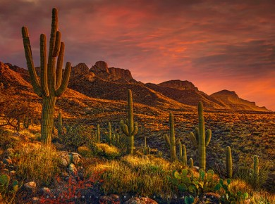 Colorful clouds gather at sunset at the pusch ridge mountain range, santa catalina mountains, arizona