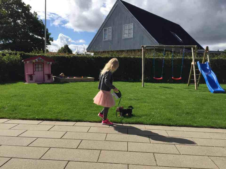 Prinsesse Izabell er fyldt 5 år - og noget om heste og førskole...