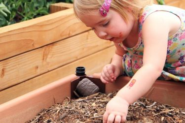 Young girl planting a seed in a large planter