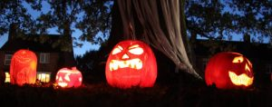 Image of lit Jack-o-Laterns lined up in front of an oak tree