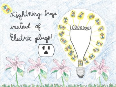 Drawing of a lightbulb surrounded by lightning bugs