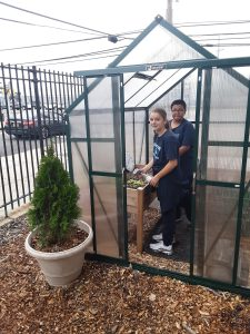 Two NYC junior high school students working inside of a greenhouse