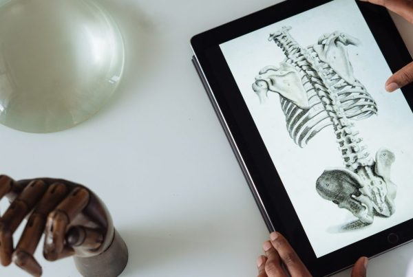 Top down view of a student compating a skeleton on an tablet with a real-life model of skeletal hand