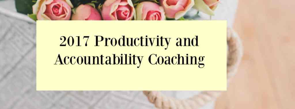 2017 productivity and accountability coaching