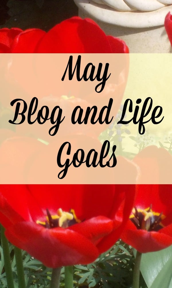 Blog and life goals with action plans and affirmations
