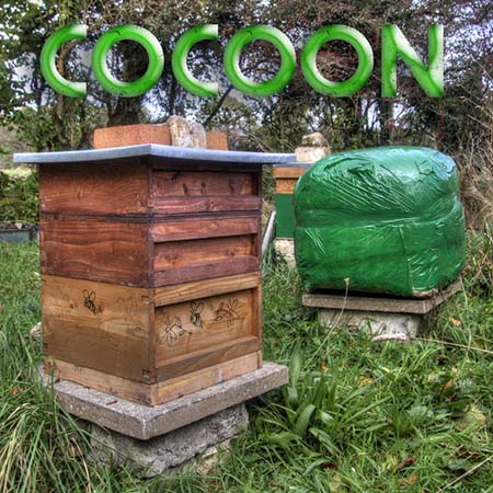 if you have already began keeping bees and live in really cold temps then you might have noticed that a lot of your bees like 23 of a hive die during the