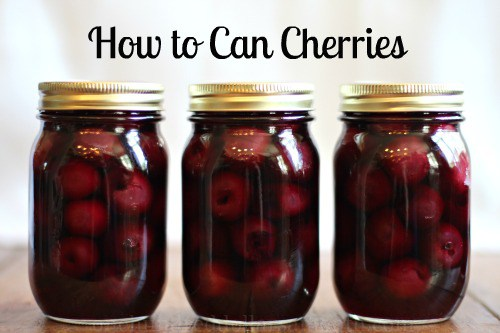 how-to-can-cherries-g