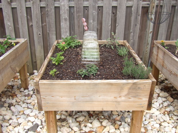 I Like The Look Of Making A Full Garden Out Of Mini Elevated Raised Garden  Beds. Basically They Built A Bunch Of Elevated Raised Garden Beds.