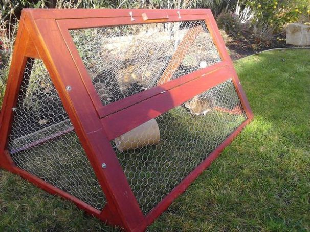 Rabbit Tractor Designs : Diy rabbit hutch plans to get you started keeping rabbits