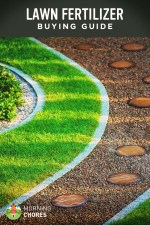 Best Lawn Fertilizer for Grass – Buying Guide and Recommendation