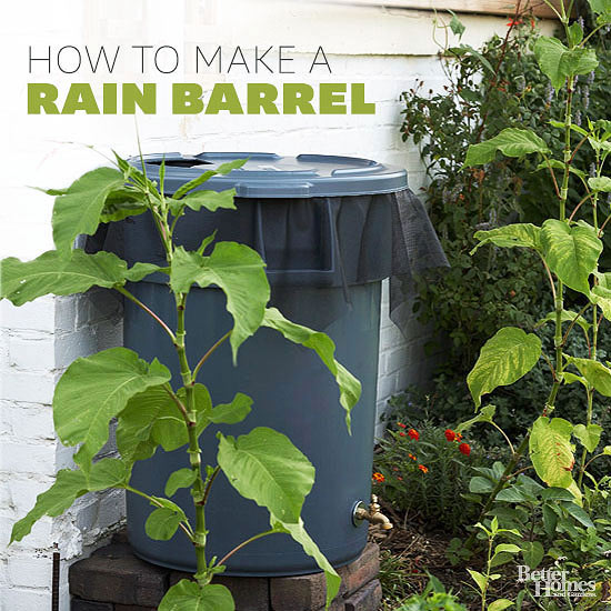 Cheap Ways To Do Your Garden: 23 Awesome DIY Rainwater Harvesting Systems You Can Build