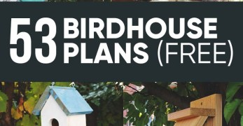 53 Free DIY Bird House & Bird Feeder Plans that Will Attract Them to Your Garden