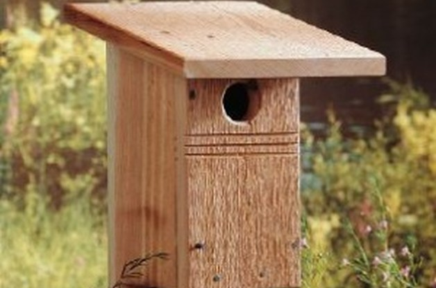 53 diy bird house plans that will attract them to your garden for Types of birdhouses for birds