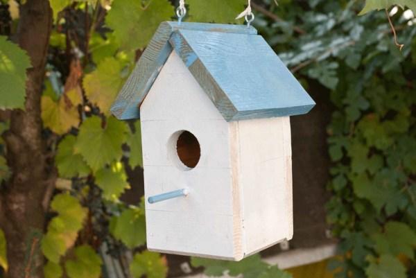 small-birdhouse-plans