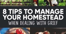 8 Tips to Help You Manage Your Homestead When Dealing with Grief or Life Problems