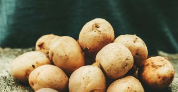 Growing Potatoes: A Beginner's Guide to Planting Big & Healthy Potatoes