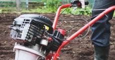 Till vs. No-Till: 6 Reasons I've Decided to Go Back to Tilling My Garden