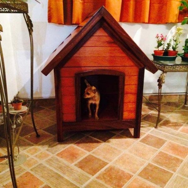 Cottage Style Dog House Plans