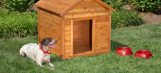 This dog house is another traditional style. It follows the basic A-frame  design of a typical home. It could be suitable for most any size dog, ...
