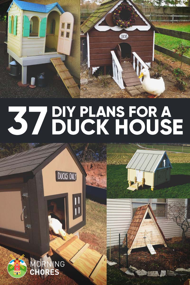 37 Free DIY Duck House / Coop Plans & Ideas that You Can Easily Build
