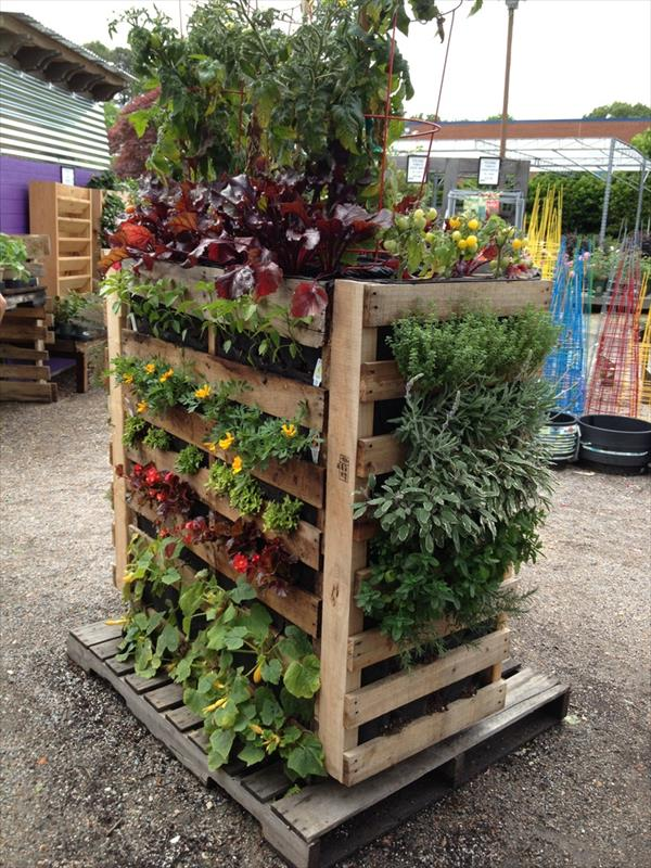 The Vertical Pallet Garden  pgi4. 43 Gorgeous DIY Pallet Garden Ideas to Upcycle Your Wooden Pallets